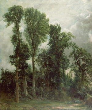 John Constable - Trees at Hampstead