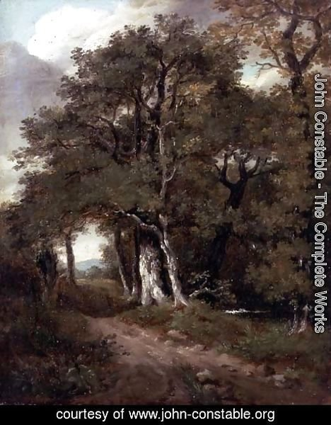 John Constable - A Wooded Path