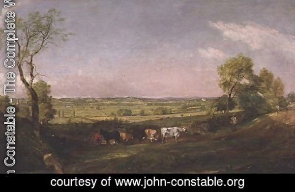 John Constable - Dedham Vale  Morning, c.1811