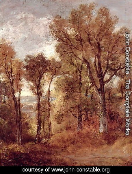 John Constable - Woodland View in Suffolk