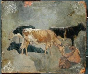 Study of Five Horned Cattle