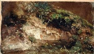 John Constable - Undergrowth, c.1821