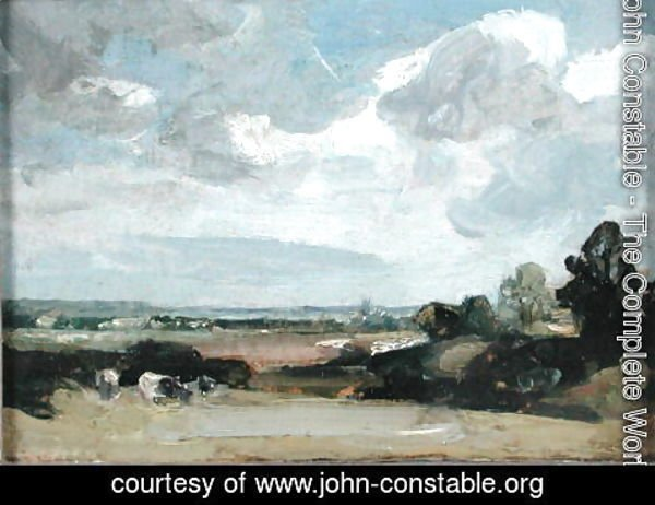John Constable - Dedham from Langham