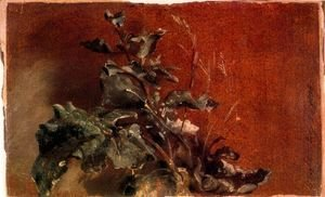 John Constable - Study of plants